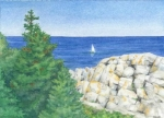 Gull Rock Monhegan