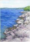Blue Acadia
